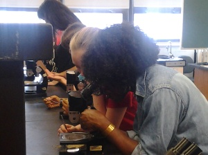 Mandë Holford, Ph.D., and students using microscopes. #WSF15